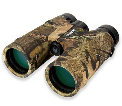 Carson 3D Series 10×42 High Definition Binoculars review