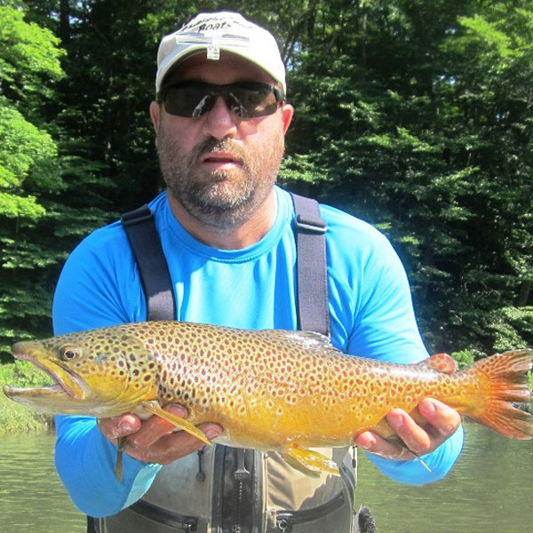 736184ccc1 How much more vulnerable large trout are to being caught during rainy  weather and high water conditions.