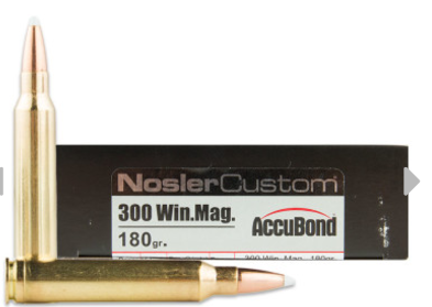 Nosler Custom Trophy Grade Accubond