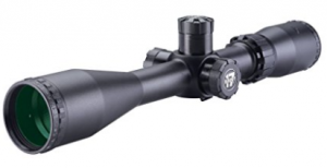 review scope